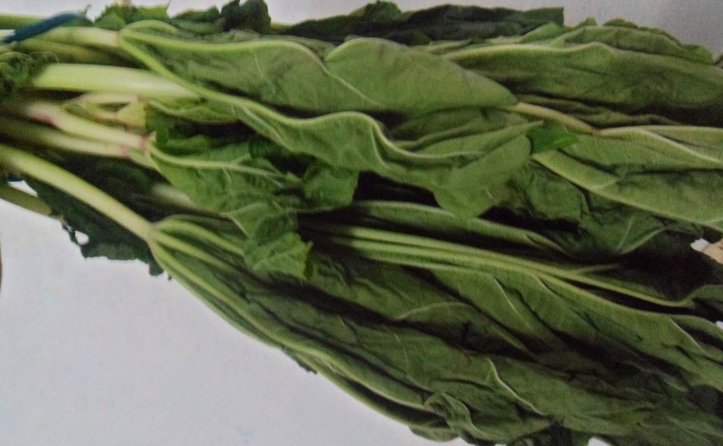 islandcabbage